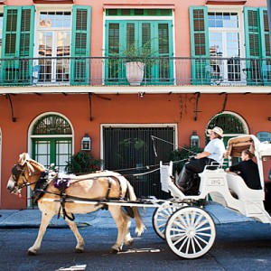new_orleans_horse_carriage